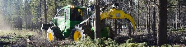 Skidder-2-modificado-slide.jpg